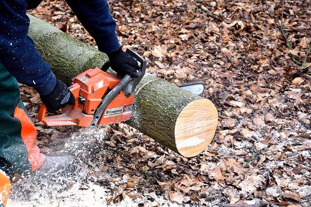 24/7 Emergency Tree Service